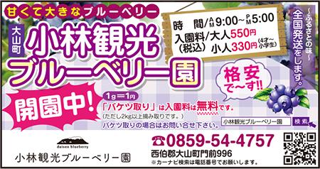 180622_kobayashi